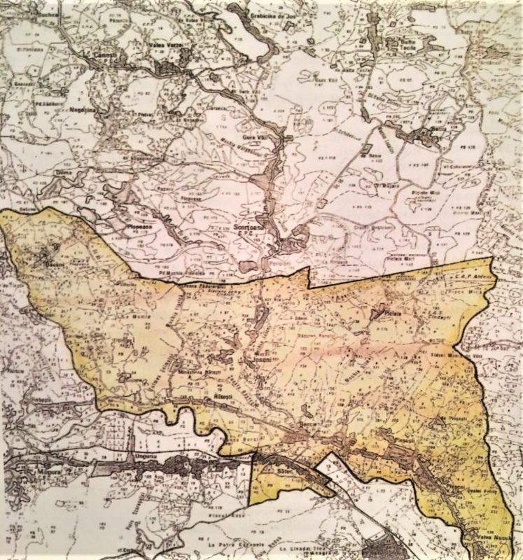Comuna Berca Primaria Comunei Berca